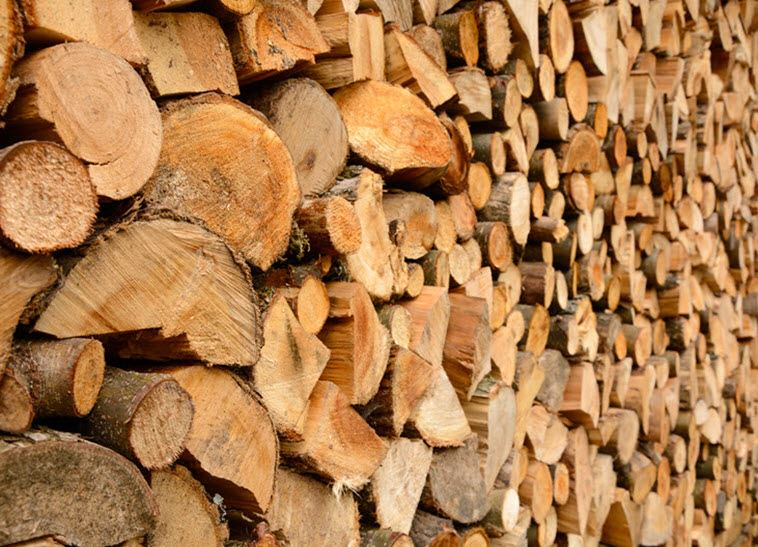 WoodPile_Homepage